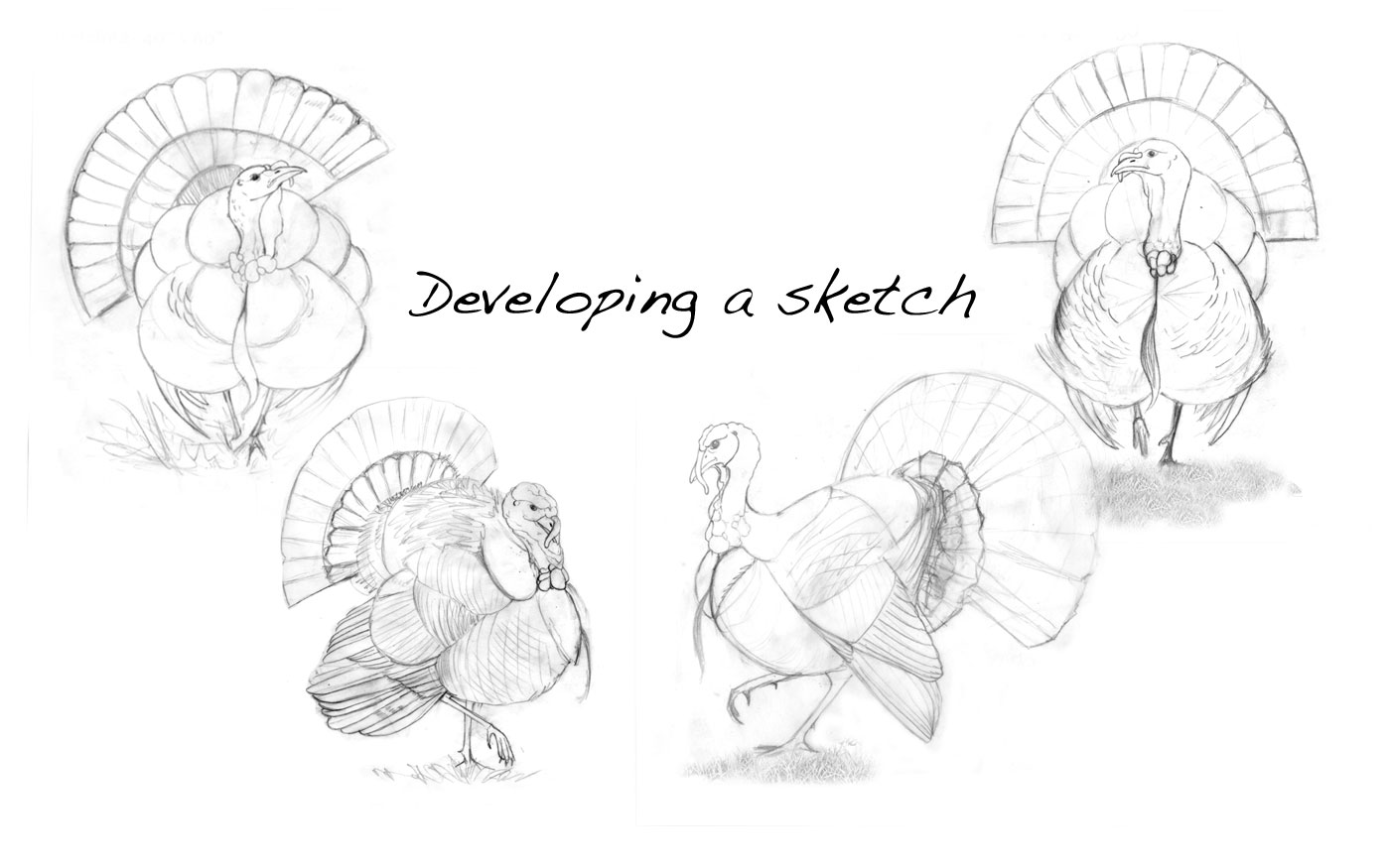 DevelopingSketch