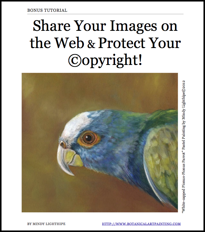 Share Your Art on the Internet- ©